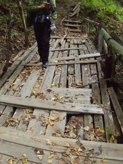 橋は簡易なものです。