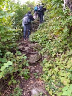 急な上に岩の多い道。