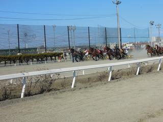 第5レース